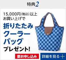 特典2 1万5千円以上お買い上げで折りたたみクーラーバッグプレゼント