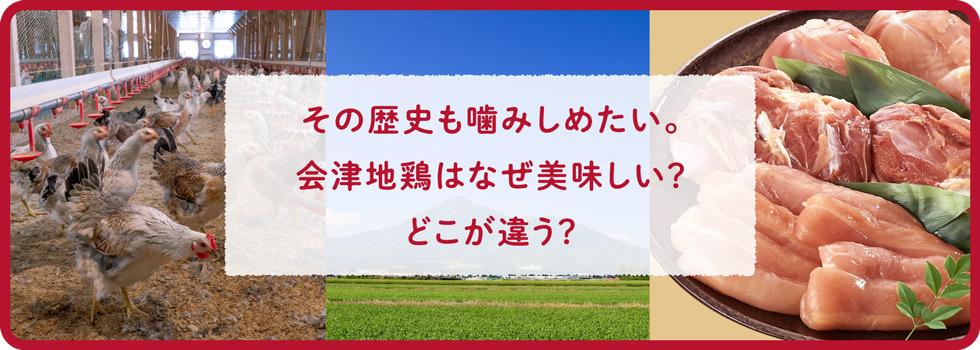 その歴史を噛み締めたい。会津地鶏はなぜ美味しい?どこが違う?