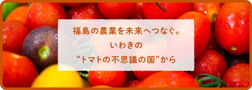 """福島の農業を未来につなぐ。いわきの""""トマトの不思議な国""""から"""