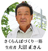 八果園の大沼 さくらんぼ一筋 生産者 大沼正さん