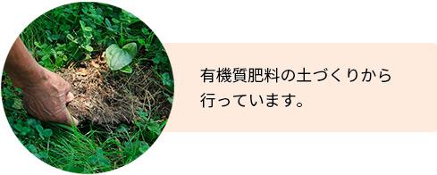 有機質肥料の土づくりから行っています。