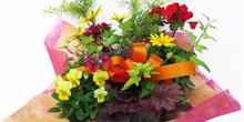 花・園芸用品
