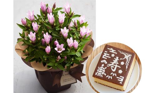 お花とお菓子の組み合わせギフト