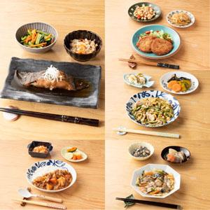 旬の手作りおかずセット(健幸ディナー) (主菜1品+副菜2品)×5食