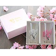 ≪冷感桜≫天開グラスP01145ペア